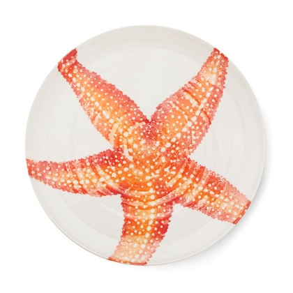 Platter Starfish Orange: click to enlarge