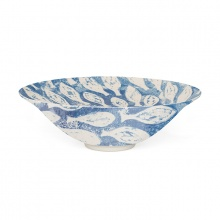 Salad Bowl Shoal Fish